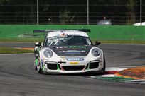 porsche-991-gt3-cup-gen-1-with-abs