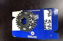 brand-new-hewland-ft-200-ratio