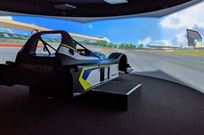 professional-simulator-driver-development