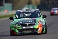 for-sale---peugeot-308-racing-cup