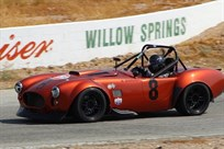 1965-ffr-shelby-cobra-race-car-367cui633hp-v8